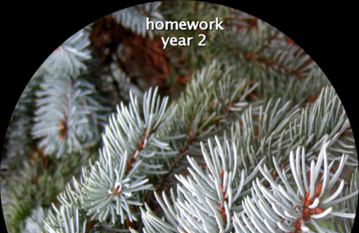 Sound release「homework – year 2」