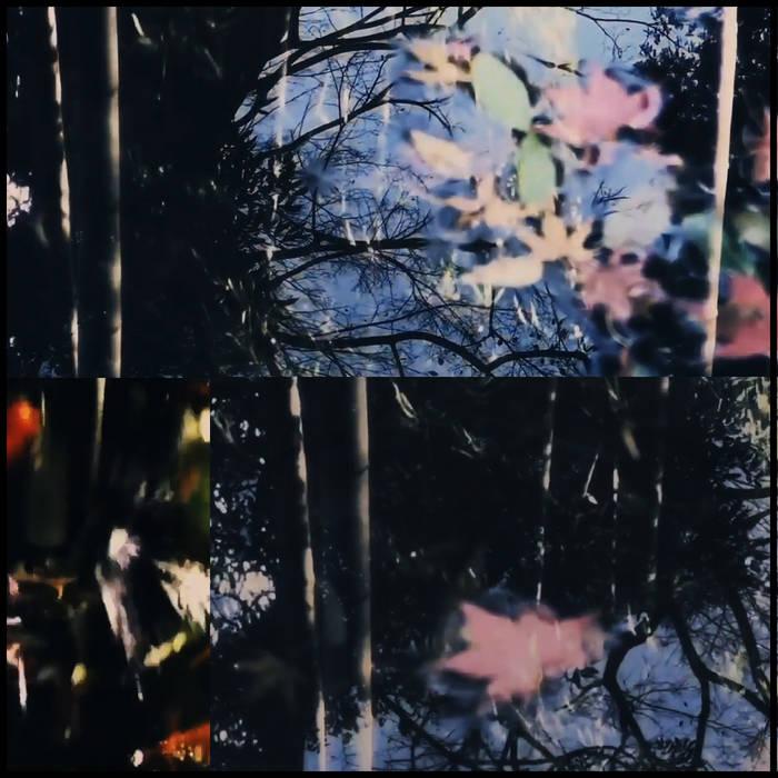 Sound release『玉響 -Tamayura-』