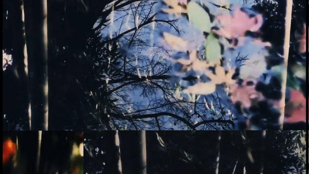 【MV】 玉響 -Tamayura-